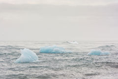 Ice floating in the sea on a cloudy day, south Iceland Royalty Free Stock Photos