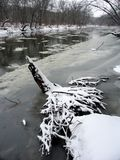 Kishwaukee River Winter Scene. Ice floats down the Kishwaukee River in northern Illinois Royalty Free Stock Photography