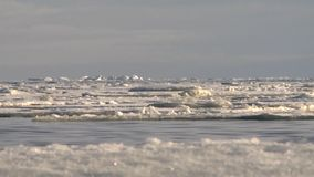 Ice floats on the sea. stock video footage