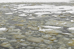 Ice floats in winter. Gulf of Finland, Baltic Sea Stock Images