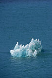 Ice floe Royalty Free Stock Photo