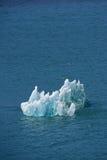 Ice floe royalty free stock photo