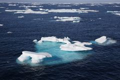 Ice floe. In the canadian arctic Stock Photography