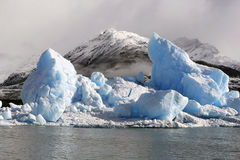 Ice floe stock image