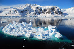 Ice floe in antarctic landscape. With clear skies Stock Photos