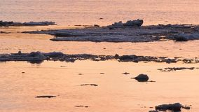 Ice floe floats in water, fragments of ice on the river in spring, ice drift.  stock video