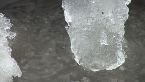Ice floe floats in water stock video