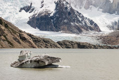 Ice floe on glacial lake in Patagonia Royalty Free Stock Photos