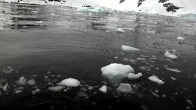 Ice floe in ocean of Antarctica. stock video