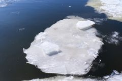 Ice floe on the river. Ice floe is melting on the river Stock Images