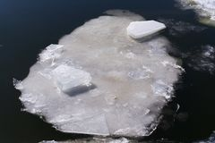 Ice floe on the river. Ice floe is melting on the river Stock Photos