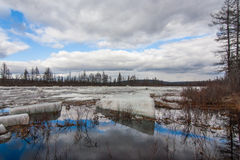 ICE FLOE. Spring river ice break-up sky water grass snow ice floe Yakutia Royalty Free Stock Image