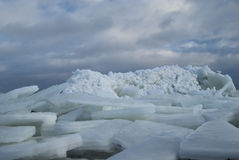 Ice floes Stock Images