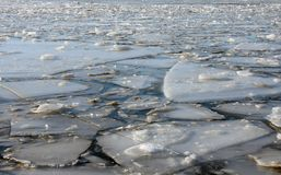 Ice floes Royalty Free Stock Photo