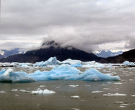 Ice floes from an arctic glacier. Stock Photos
