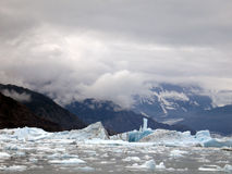 Ice floes from an arctic glacier. Stock Image