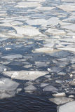Ice floes background of winter river Royalty Free Stock Images