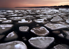 Ice floes in the Baltic Sea Stock Images