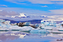 The ice floes  of freakish forms Royalty Free Stock Photos