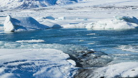 Ice floes melting at a glacier lagoon, timelapse stock video