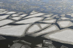 Ice floes Royalty Free Stock Photos