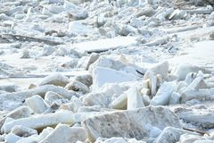 Ice floes Royalty Free Stock Photography
