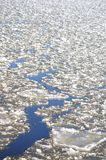 Ice floes on the river Elbe Stock Image