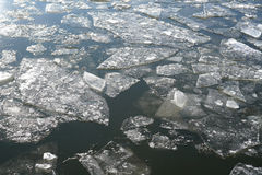 Ice floes Stock Photography