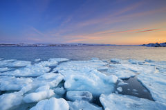 Ice floes at sunset, Arctic Ocean, Norway Stock Images