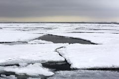 Ice-floes and Water, Arctic Landscape Royalty Free Stock Photography