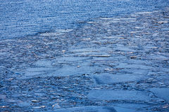 Ice floes in water Royalty Free Stock Images