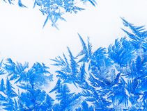 Ice flowers 17 Royalty Free Stock Images