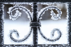 Ice Flowers. Frozen steel fence in winter stock image
