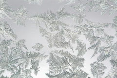 Ice flowers on a frozen window. Royalty Free Stock Photos