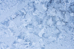 Ice flowers on glass - texture Royalty Free Stock Photography