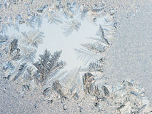 Ice flowers on glass - texture Royalty Free Stock Photo