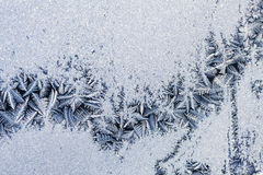 Ice flowers on glass - texture Stock Images