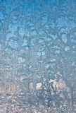 Ice flowers on window glass Stock Images
