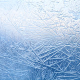 Ice flowers in window glass Stock Images