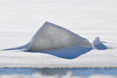 Ice formation. This is a ice flow on the cedar river, in cedar rapids Iowa. this unique formation of ice pushed through it, and formed an almost iceberge look Royalty Free Stock Photography