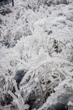 Ice formations royalty free stock image