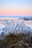 Ice formation on lakeside Royalty Free Stock Images