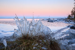 Ice formation on lakeside Royalty Free Stock Image