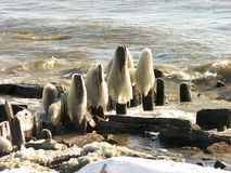 Ice formation at Michigan lake pier at Milwaukee. Wisconsin, USA royalty free stock images