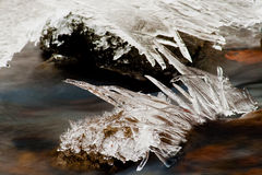 Ice formation in a small creek. Ice flowers in a creek at Hungary Stock Photo