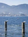 Winter at  Tegernsee Stock Image