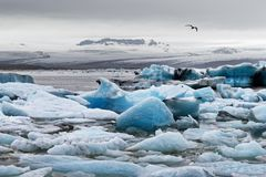 Ice formations in front of a big glacier royalty free stock photo