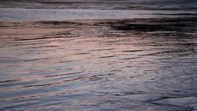 Ice is formed on the river in autumn, natural background, sunset, Ob River, Russia. Ice is formed on the river in autumn, natural background, sunset, Ob River stock video footage