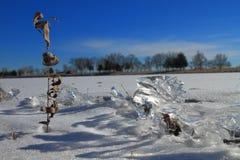 Ice fragment Stock Photography