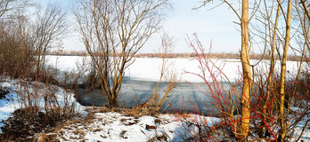 Ice fragments under thin layer of frozen river water. Stock Image